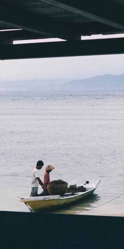 Bali-Sea-Weed-Farmers_400x800